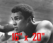 "Muhammad Ali~Heavyweight Champ~The Greatest~Poster~16"" x 20"" Photo"