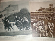 Photo article Alycidon wins Ascot gold cup and the parade 1949 horse racing