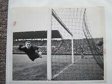 Toni Turek, National-Torhüter, Fortuna Düsseldorf, WM 1954