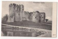 Chepstow Castle Vintage Peacock Postcard 769b