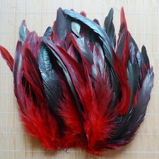 100/200/500pcs Lots 8-15cm Beautiful Multi color Rooster Tail Natural Feather