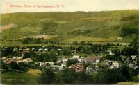 Birdseye View Springwater New York C-1910 Postcard Lithochrome 10797