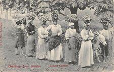 Jamaica, Man, Women & Boy Carrying Bananas, Donkey, Posed Image used 1906