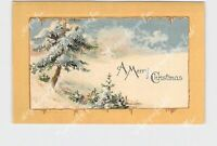 PPC POSTCARD MERRY CHRISTMAS SNOW COVERED TREE FIELD HOUSE GOLD EMBOSSED