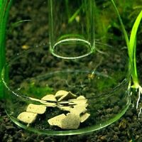 Aquarium Fish Tank Clear Shrimp Glass Feeding Dish Feeder Lates Bowl Ornament