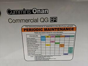 Cummins Onan QG7000 EFI - Genset Generator - 7HGJAD-2139J -Used -STARTS AND RUNS