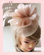 Classic Sinamay Fascinators Vintage Pink Feather Flower Races Wedding Party