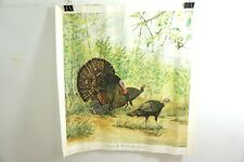 """WILL YEAGER """"SPRINGTIME IN THE OLD APPLE ORCHARD"""" SIGNED & NUMBERED TURKEY PRINT"""