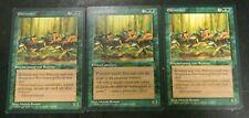 MTG Italian/German Legends Elvish Riders x3 Green Rare Excellent - Unplayed
