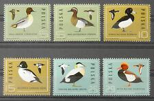 - Polen Poland 1985 Mi. Nr. 2998-3003 ** postfrisch MNH Vögel birds ducks