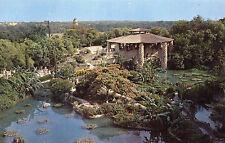 postcard USA    Sunken Garden   San Antonio  Texas   unposted