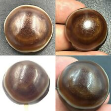 Ancient Old Natural Agate Lukmik Goat Eye Ancient Dzi Bead Authentic
