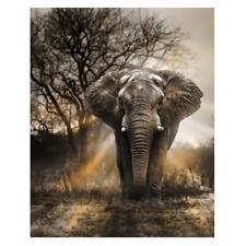 Animal Elephant 5D DIY Round Diamond Painting Embroidery Kits Cross Stitch Craft