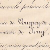 Constance De Vougny De Boquestant Le Noir De Jouy 1878
