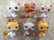 Littlest Pet Shop RARE Sitting Cats HUGE LOT #42 148 664 224 226 78 LPS