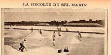 RECOLTE DU SEL MARIN ENJAVELAGE MISE EN MOTTE DU SEL IMAGE 1908 PRINT