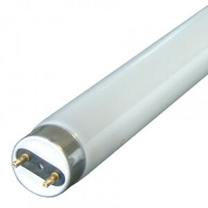 GE 5ft 51w (Replaces 58w) T8 Fluorescent Tube 840 Cool White  - Pack of 2