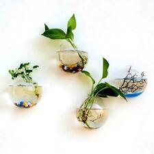 12cm Hanging Flower Pot Glass Ball Vase Terrarium Wall Fish Tank Container