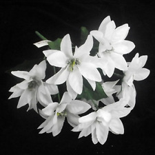 1 x Bunch of White Christmas Poinsettias with silver centers  7 flowers