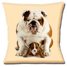 """Brand NEW English Bulldog adulto e Cucciolo Carino Crema 16 """"Cuscino Coprire"""