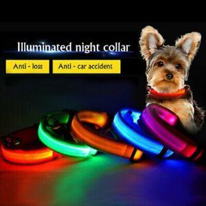 Dog Cat Pet LED collar belt USB rechargeable adjustable flashing night safety