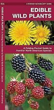 Edible Wild Plants: A Folding Pocket Guide to Familiar North American Pamphlet