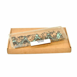 Live, Mealworms, Crickets, Locusts, Morios, Dubia, Waxworms, Letterbox Livefood