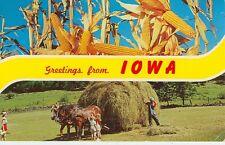 Greetings From Iowa/ Farming/Horse Pulling Hay Wagon Pm1964 Corydon(Jl243)