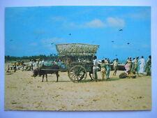 "CPM ""Bullock cart on the beach - Sri Lanka"""