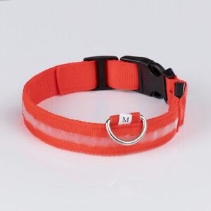 Leuchthalsband rot - wählen Sie zwischen S, M, L und XL