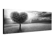 150x50cm Panoramabild Schwarz Weiss - Baum Herzform Sonnenuntergang Wolken