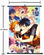 Japanese Anime Haikyuu Hinata kageyama Poster Wall Scroll cosplay 2355