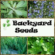 Herb Seed Song 4 Pack: Parsley, Sage, Rosemary and Thyme for vegetable gardens