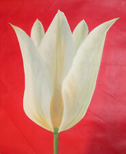 Modernist oil painting flower signed
