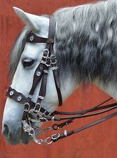 Portuguese Dressage Double Bridle , two sets of reins, brown leather X-Full