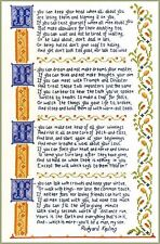 If Verse Sampler - complete cross stitch kit on 14 aida with COLOUR chart