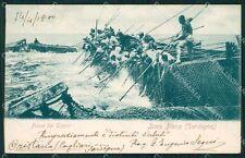 Sassari Alghero Isola Piana Pesca del Tonno SCOLLATA cartolina QT2416