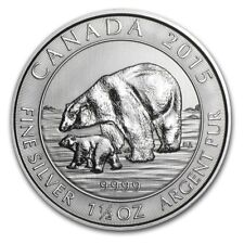 1,5 oz Kanada Wildlife Polarbär mit Kind Jungen 2015 999 Silber Silbermünze
