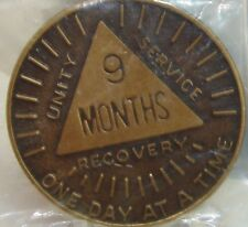 Alcoholics Anonymous AA 9 MONTH Sunshine Bronze Medallion Token Chip Coin Sober