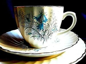 ANTIQUE TRIO ( CUP SAUCER AND PLATE ) BY ROYAL WESSEX ( my xxx 1 )
