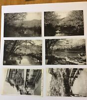 6 Japan Cherry Blossom  Architecture C-1910   postcard RPPC BW Photos