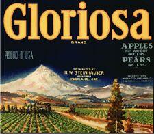 Portland Oregon Gloriosa Apple Apples Pears Pear Fruit Crate Label Vintage Print
