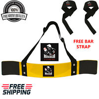 Muscular Fit WEIGHT LIFTING BODYBUILDING BICEP ARM BLASTER FITNESS BAR CURL ARMS