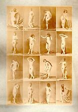 C01 Calavas photo étude pour peintre vintage albumen print albuminé nus femme