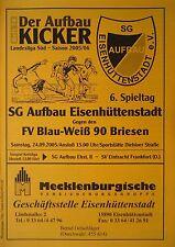 Programm 2005/06 Aufbau Eisenhüttenstadt - BW 90 Briesen