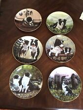lot of Border collies dog plates by Danbury Mint set of six nice numbered