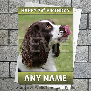 Springer Spaniel personalised birthday card. 5x7 inches.