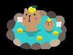 Kapibara Japan