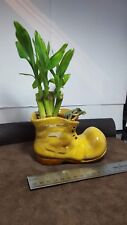 LUCKY REAL LIVE BAMBOO PLANT  CERAMIC VASE CHRISTMAS GIFT CUTE DECOR Office