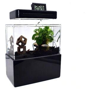 Small Fullest Desktop Fish Tank LED+HEATER+THERMOMETER Nano Tank FREE SHIPPING